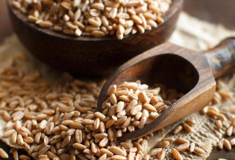 Spelta – drevna žitarica